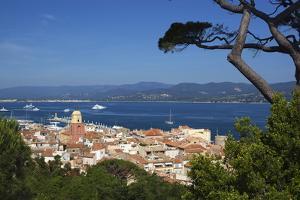 View over Old Town, Saint-Tropez, Var, Provence-Alpes-Cote D'Azur, France, Mediterranean, Europe by Stuart Black