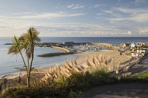 View over The Cobb and beach from Langmoor and Lister gardens, Lyme Regis, Dorset, England, United  by Stuart Black