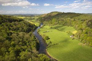 View over Wye Valley from Symonds Yat Rock by Stuart Black