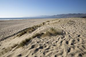 Dunes and Beach by Stuart