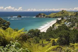 Hahei Beach, Hahei, Coromandel Peninsula, Waikato, North Island, New Zealand, Pacific by Stuart