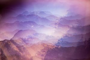Purple Haze by Stuart Haury