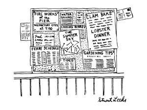 Bulletin board with various leaflets pinned up on it; they say 'The Summer… - New Yorker Cartoon by Stuart Leeds