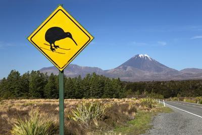 Mount Ngauruhoe with Kiwi Crossing Sign