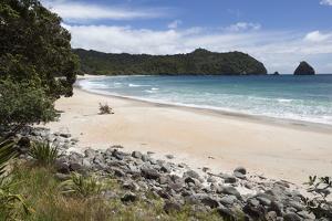 New Chums Beach and Wainuiototo Bay by Stuart