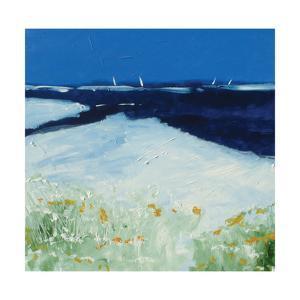 Sea and Blue Sky 3 by Stuart Roy