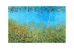 Silver Birches I by Stuart Roy