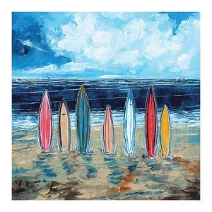 Surf Boards by Stuart Roy