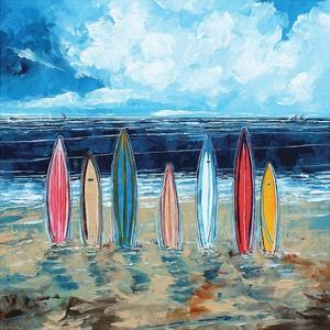 Surf Boards by Stuart Roy
