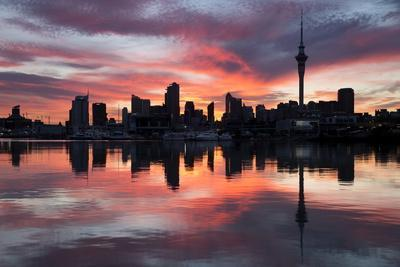 Sky Tower and City at Dawn from Westhaven Marina, Auckland, North Island, New Zealand, Pacific