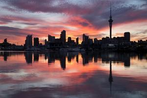 Sky Tower and City at Dawn from Westhaven Marina, Auckland, North Island, New Zealand, Pacific by Stuart