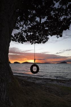 Tyre Swing at Long Bay by Stuart