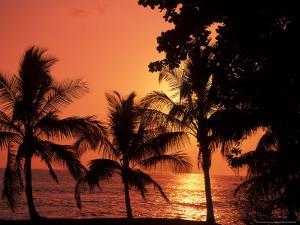 Sunset, Malpais, Nicoya Peninsula, Costa Rica by Stuart Westmoreland