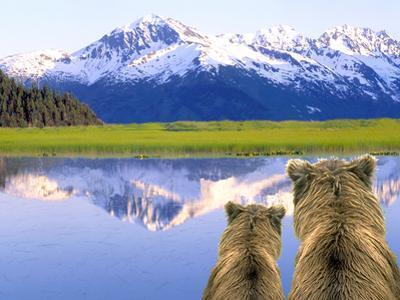Alaska Brown Bears, Alaska. by Stuart Westmorland