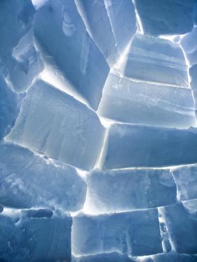 Artic Igloo, interior, Churchill, Canada, Manitoba by Stuart Westmorland