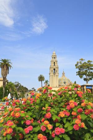 Balboa Park, San Diego, California, USA, Summer by Stuart Westmorland