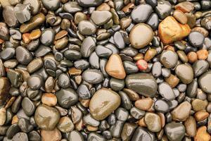 Close-up of beach rocks, Oregon by Stuart Westmorland