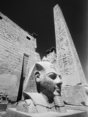 Detail of the Temple of Luxor by Stuart Westmorland
