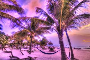 Holbox Island, Yucatan Peninsula, Quintana Roo, Mexico. HDR effect view of palm trees, beach and ha by Stuart Westmorland