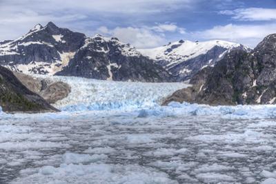 Le Conte Glacier, Alaska, Petersburg, USA by Stuart Westmorland