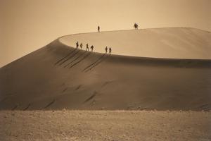 Namibia, Namib Naukluft National Park, Petrified Camel Thorn in the Namib Desert by Stuart Westmorland