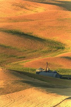 Palouse Area of Eastern Washington, USA by Stuart Westmorland