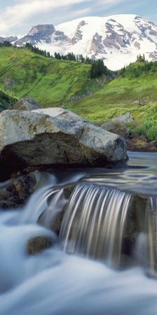 Stream on Paradise Trail near Mt. Rainier National Park lodge by Stuart Westmorland