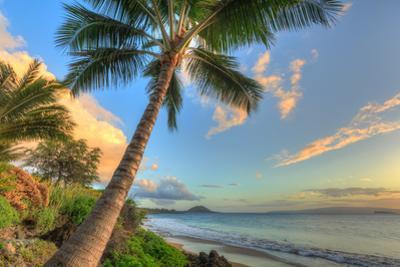 Sunset at beach, Wailea, Maui, Hawaii, USA by Stuart Westmorland