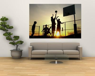 https://imgc.allpostersimages.com/img/posters/students-play-a-basketball-game-as-the-sun-sets-at-bucks-county-community-college_u-L-PFGH4E0.jpg?p=0