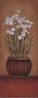 Paperwhites I by Studio 3 bamboo