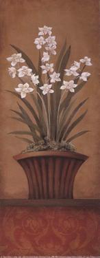Paperwhites II by Studio 3 bamboo