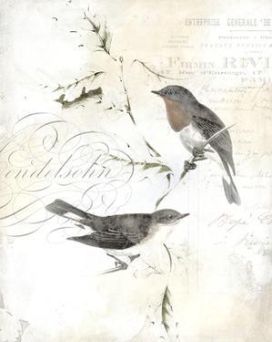 Rustic Gould III by Studio W