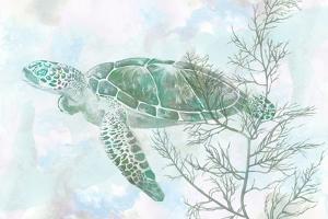 Watercolor Sea Turtle II by Studio W