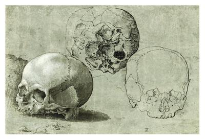 https://imgc.allpostersimages.com/img/posters/study-of-three-skulls_u-L-F8I1DC0.jpg?p=0