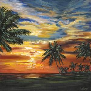 Stunning Tropical Sunset II