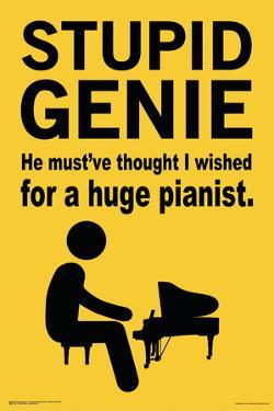 Stupid Genie