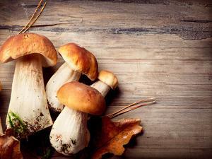 Mushroom Boletus over Wooden Background by Subbotina Anna