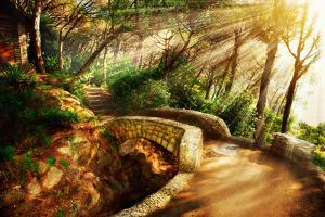 Mystical Park. Old Trees and Ancient Stone Bridge. Pathway. Misty Forest. Fantasy Landscape by Subbotina Anna