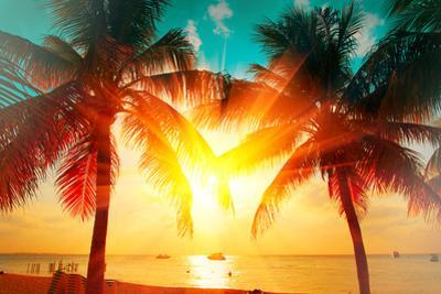 Sunset Beach with Palm Trees and Beautiful Sky Landscape. Travel, Tourism, Vacation Concept Backgro by Subbotina Anna