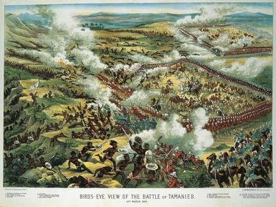 https://imgc.allpostersimages.com/img/posters/sudan-19th-century-english-war-battle-of-tamanieb_u-L-PRNWNV0.jpg?p=0