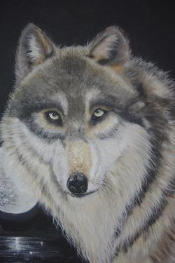 Moonlight Wolf by Sue Clyne