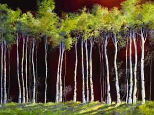 Birches 4 by Sue Darius