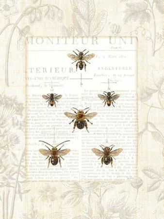 Bee Botanical by Sue Schlabach
