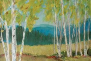 Birch Road Crop by Sue Schlabach