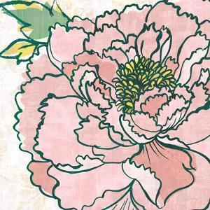 Camilles Peony Pink by Sue Schlabach
