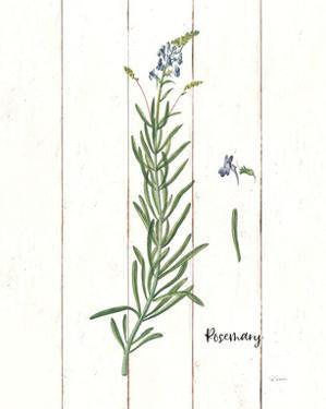 Cottage Herbs I by Sue Schlabach