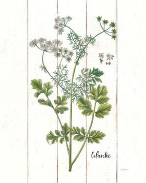 Cottage Herbs III by Sue Schlabach