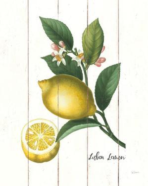 Cottage Lemon I by Sue Schlabach