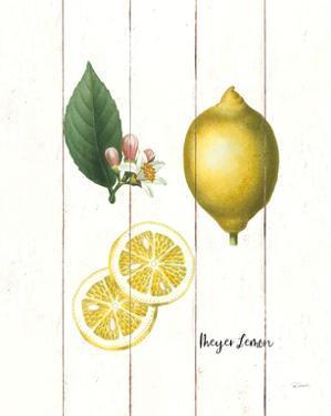 Cottage Lemon II by Sue Schlabach