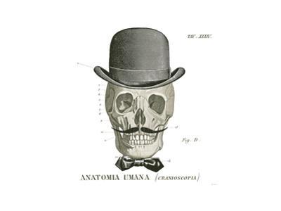 Dandy Bones IV by Sue Schlabach